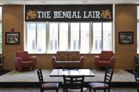 Views of the Bengal Lair
